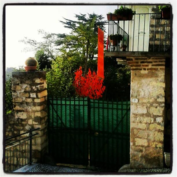Rosso di stagione #colori #autunno