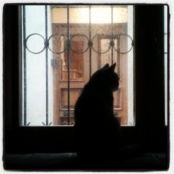 L'attesa #ombre